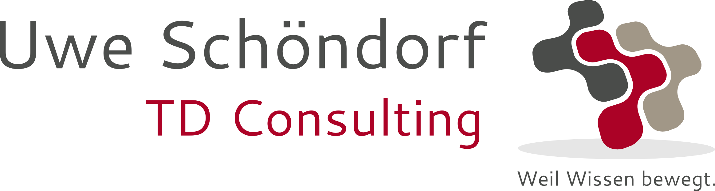 TD Consulting Logo